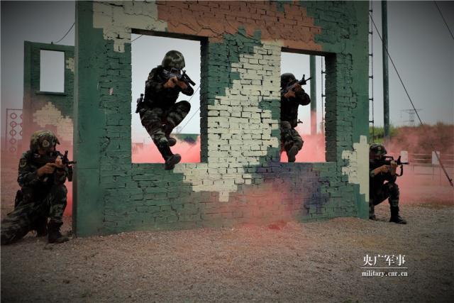 广西武警:预备特战队员锤炼特种战术技能(组图)