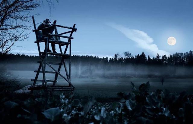 视得乐夜鹰望远镜有多强?这些人帮你找到了答案!(组图)
