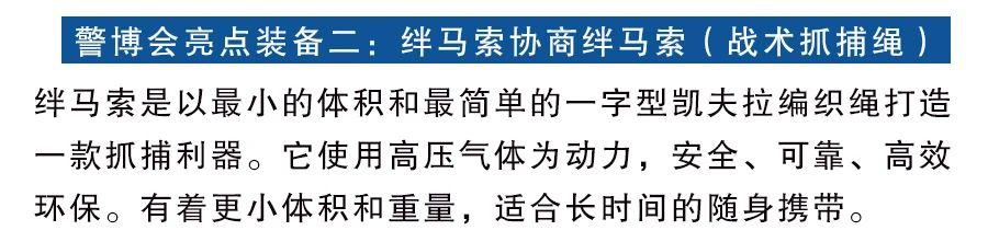 力安警用装备丨第十届警博会圆满举办成功,期待下届展会再相聚!(组图)