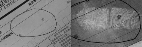 纸上的指纹怎么提取?来试试纸张无损显现系统(附视频)